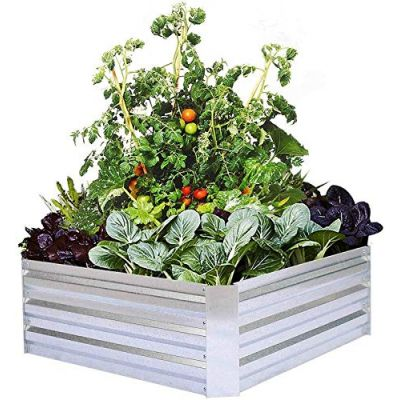 Metal Frame Garden Plant Bed - Elevated Planter Box - Silver Color (34 X 43 X 12 Inch)