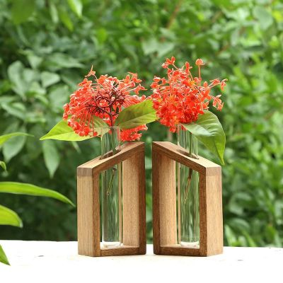 Test Tube Planter Modern Flower Bud Vase with Wood Stand with 2 Test Tube