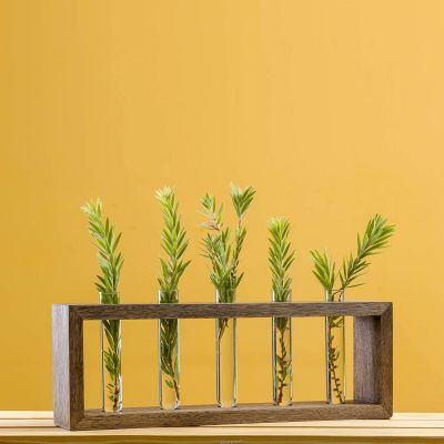 Test Tube Planter Modern Flower Bud Vase with Wood Stand with 5 Test Tube